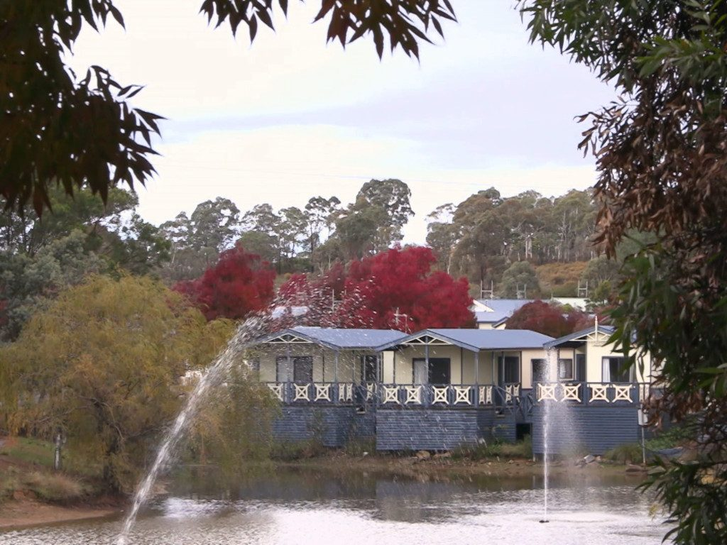 Riverside cabins at the Capital Country Holiday Park