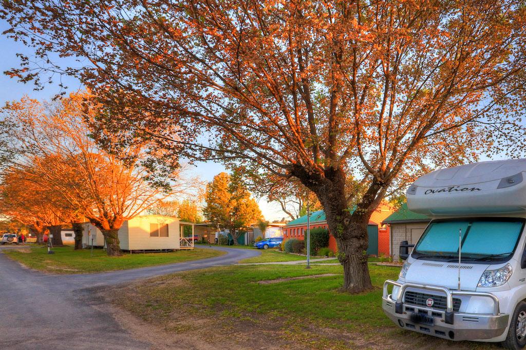 Autumn blush at Lake Anderson Caravan Park