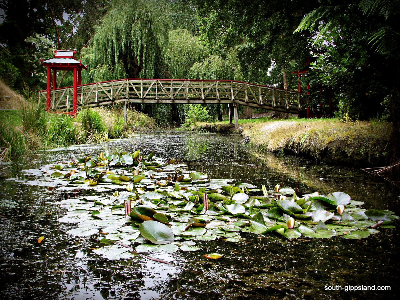 Bridge at Pearl Park Foster a 10 minute walk from Prom Central Caravan Park
