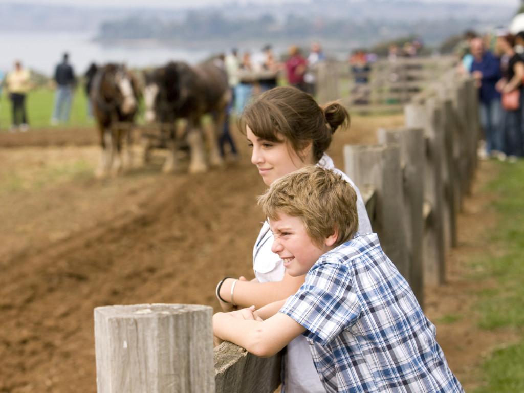 City kids experiencing farm life at Churchill Island Heritage Farm