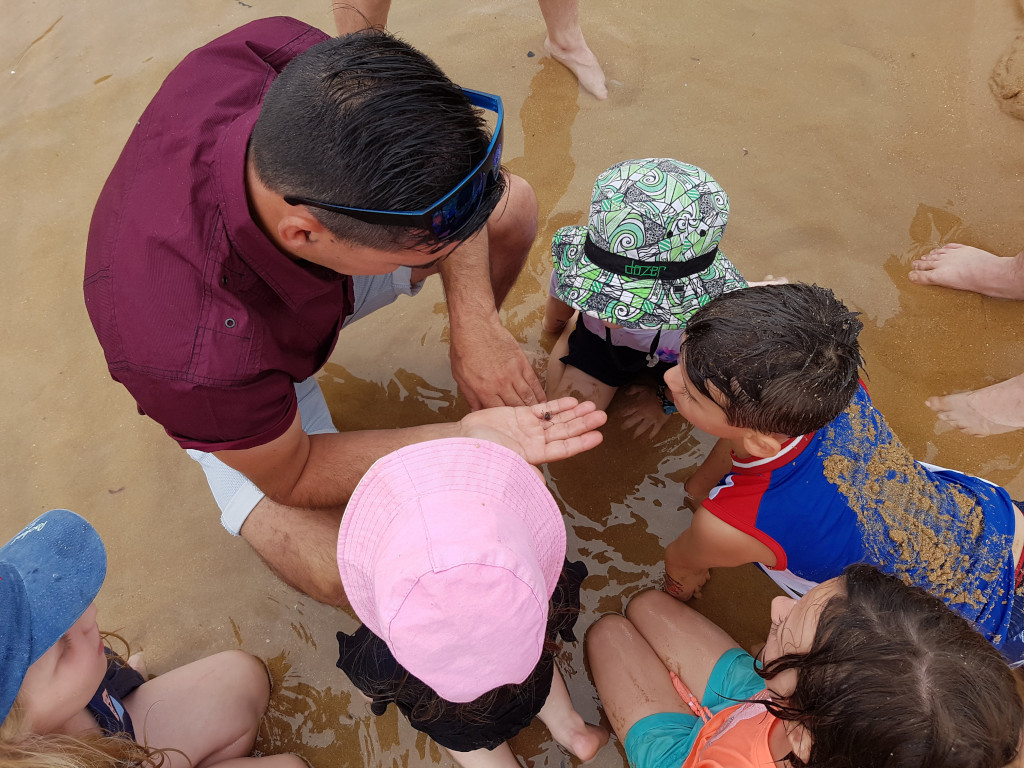Catching crabs at Erehwon Point Beach at Cowes