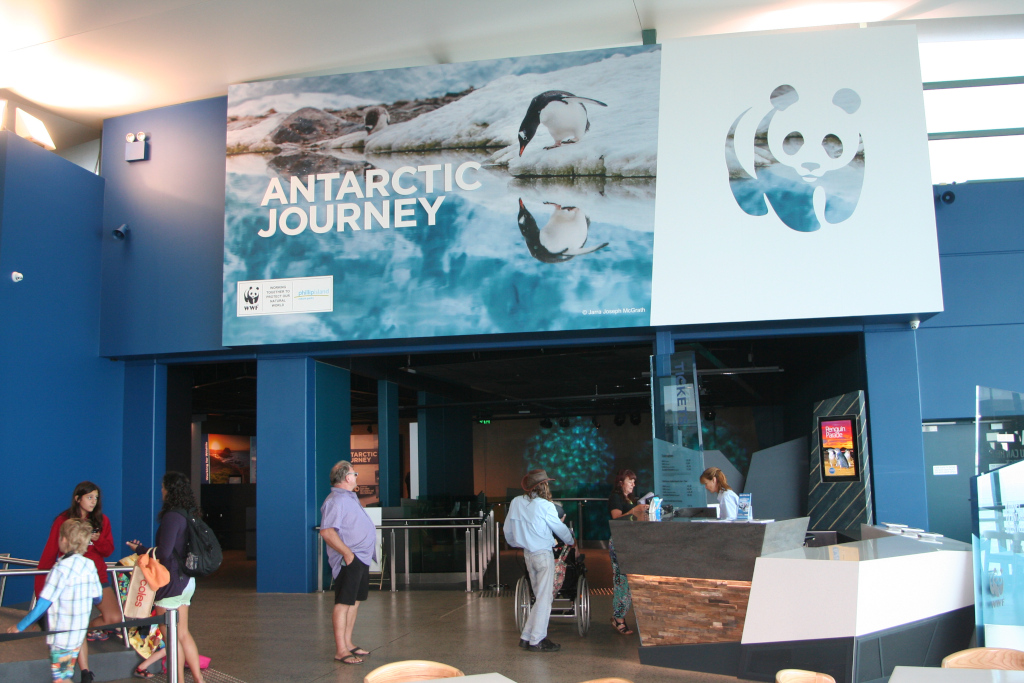 Antarctic Journey adventure presented by the WWF