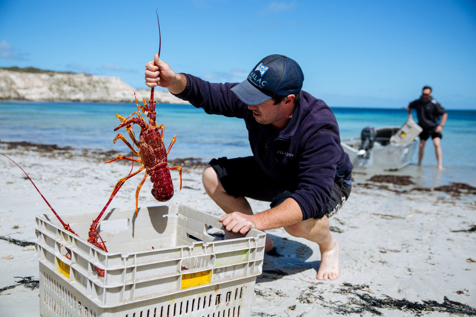Crayfish among the local seafood bounty in Port Lincoln