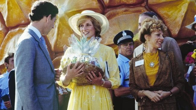 Historic panels at the Big Pineapple will commerate the royal visit from HRH princess diana and prince charles
