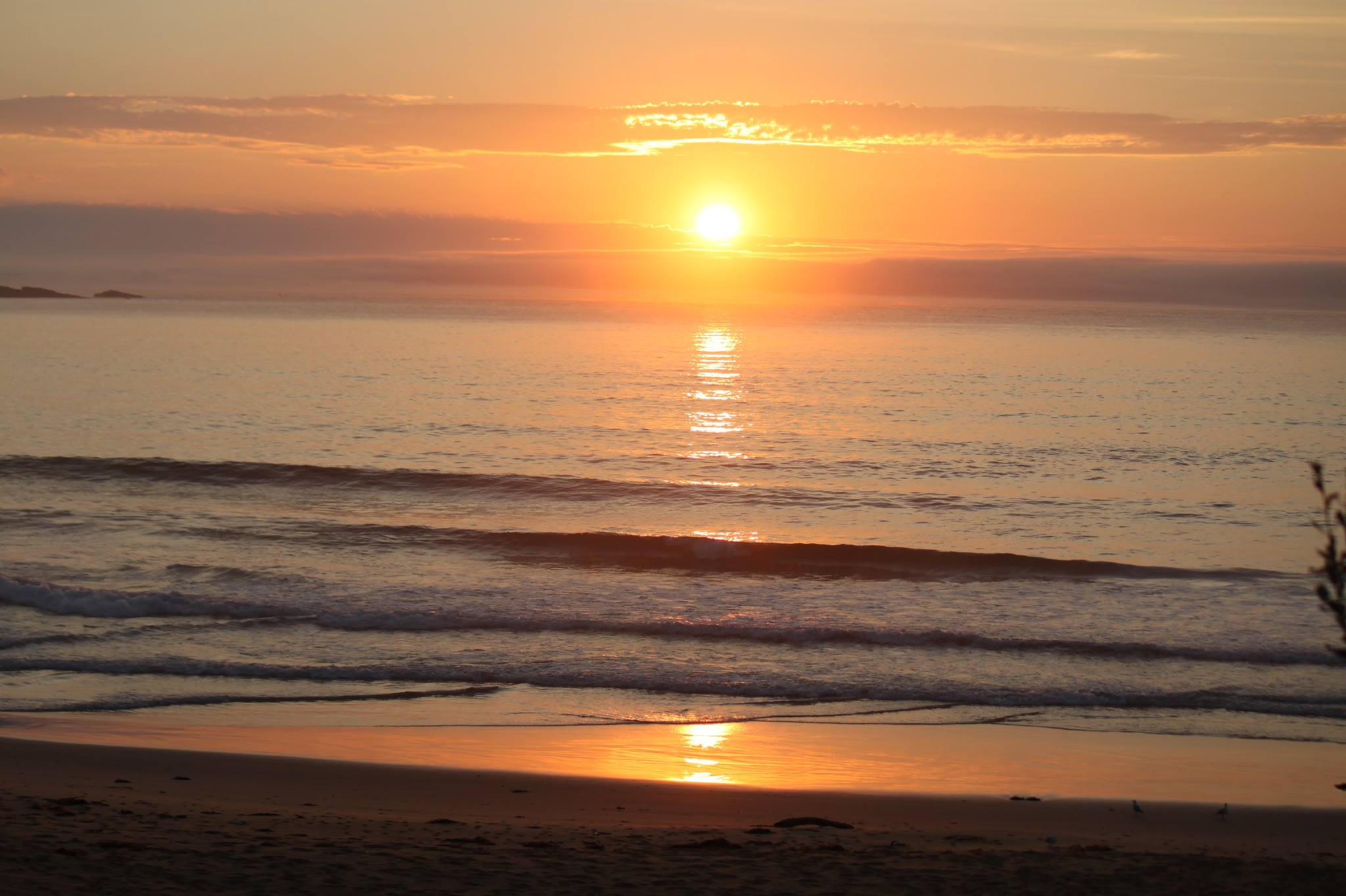 cat balou ansleys beach