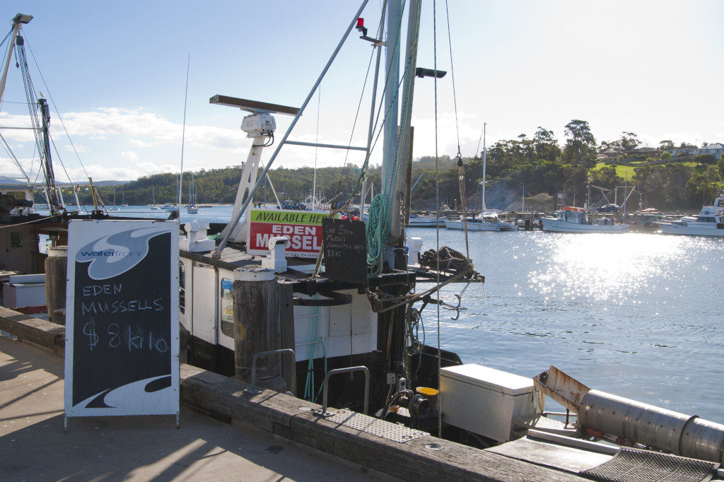 Fresh mussels sold off the boat on Eden wharf, Sapphire Coast
