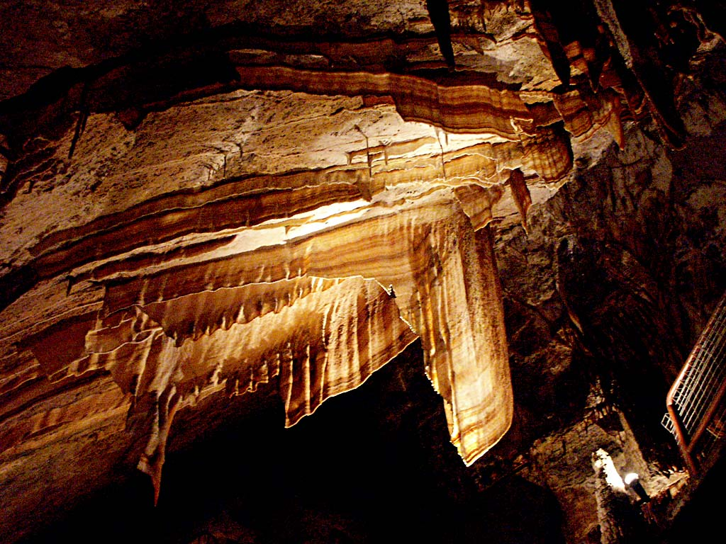 A river runs through this cave surrounded by Tarkine forest. Here, platypus feast lobster