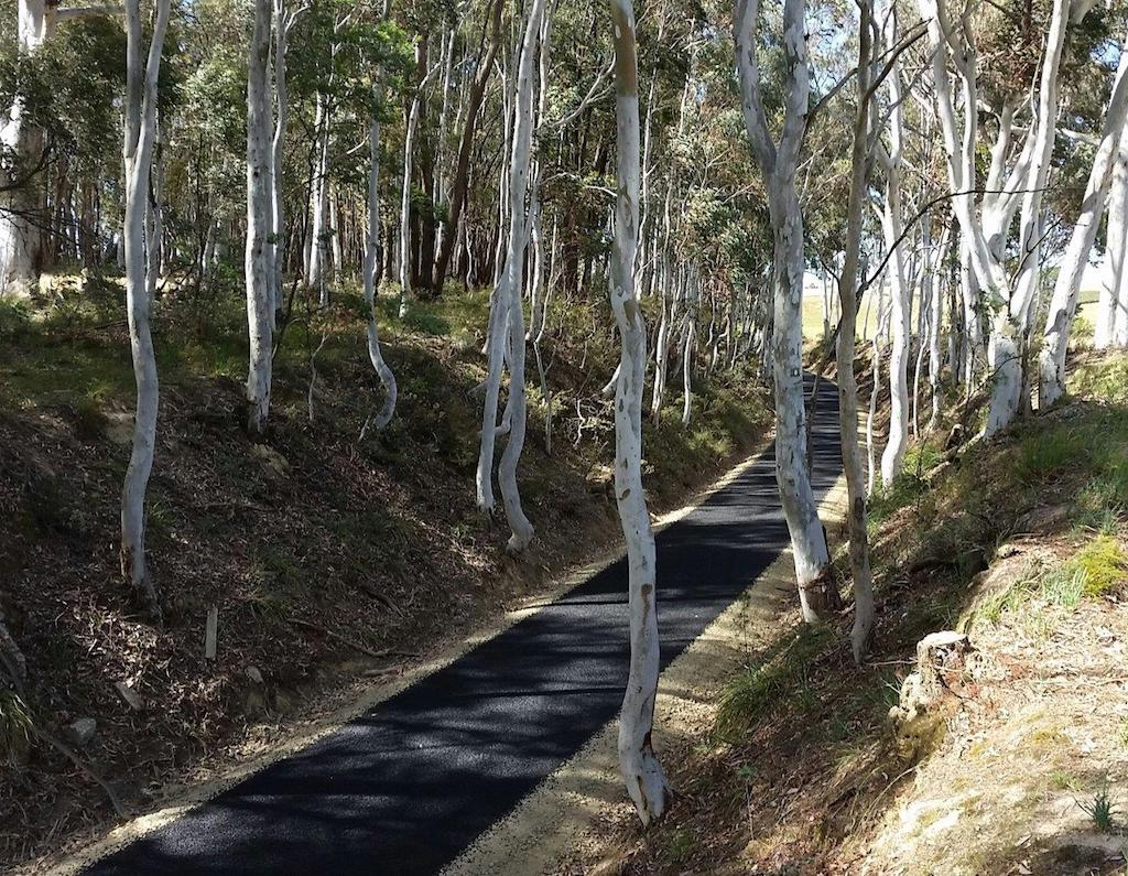 Tumbarumba Rosewood Trail restoration