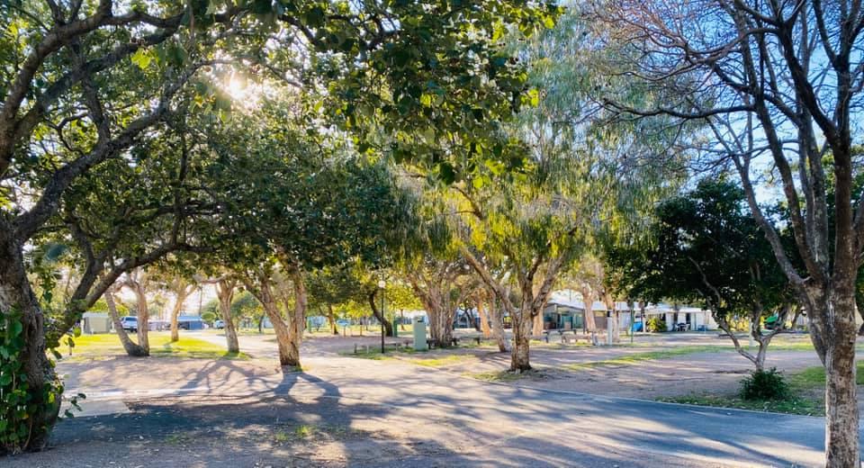 Quiet beauty as Cotton Tree awaits the season start