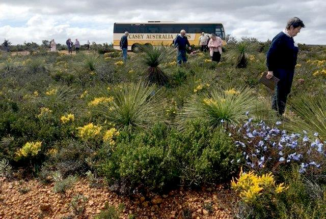 Guests will see hundreds of different species even on a day tour with Casey Australia Tours