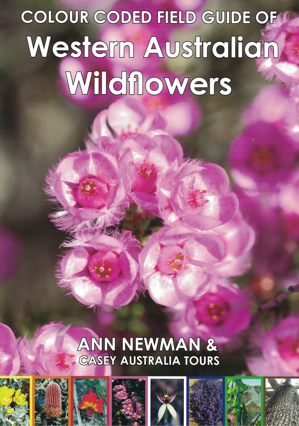 Colour Coded Field Guide Australian Wildlflowers by Ann Newman and Casey Australia Tours