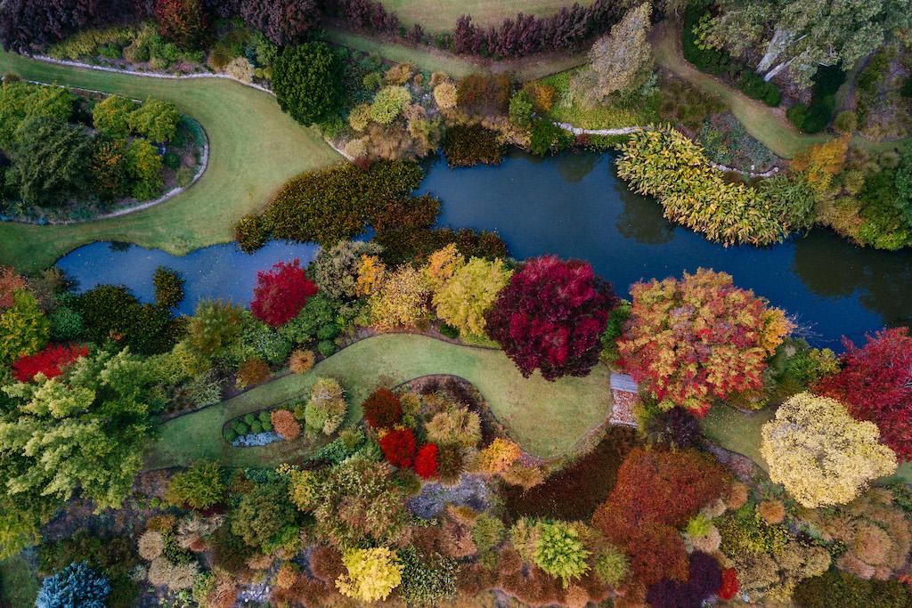 credit Imagjen, Glenrock Gardens autumn annie's favourite season