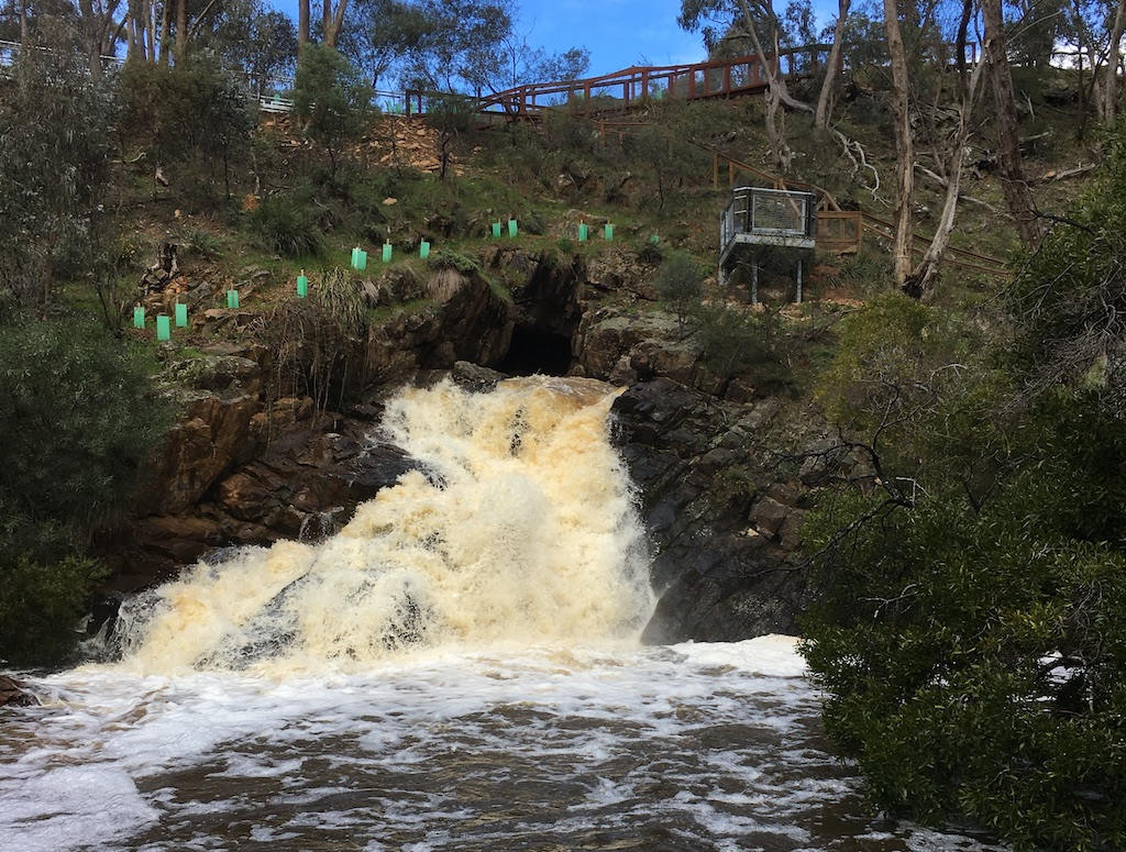 Springers Creek Blowhole