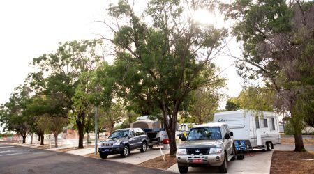 Paved campsites under shady deciduous trees let in the winter light without foregoing shade in the summer at the Dubbo City Holiday Park