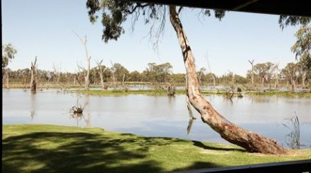 Views of the Gunbower River from the Cohuna Waterfront Holiday Park