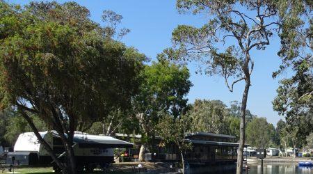 Greener pastures at BIG4 Tweed Billabong Holiday Park