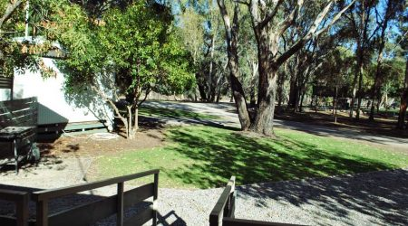Sheltered camping and cabin accommodation near the Murray River at Barham Lakes Caravan Park